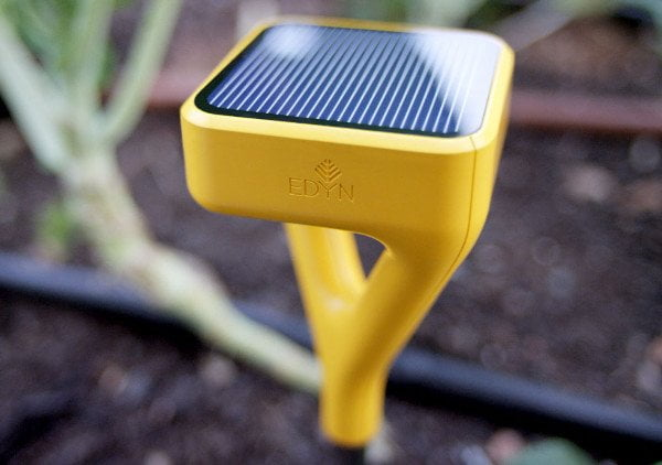 capteur edyn innovation plante