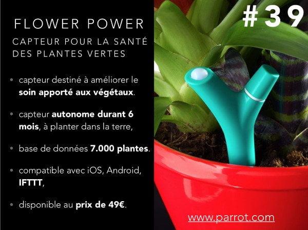 parrot-flowerpower