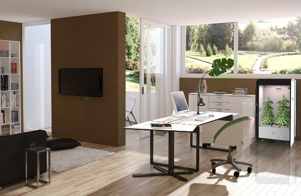 leaf-home-office