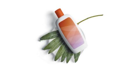 C16 Biosciences substitut huile de palme