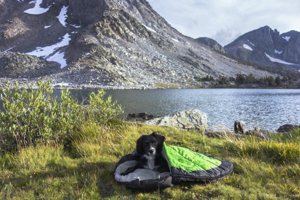 Alcott sac de couchage pour chien