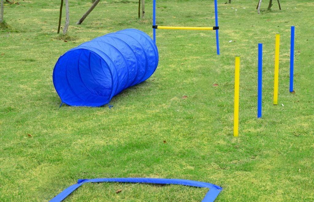 Pawhut idée cadeau kit agility