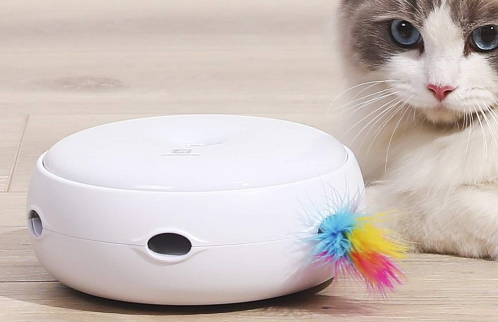 top jouet chat innovation