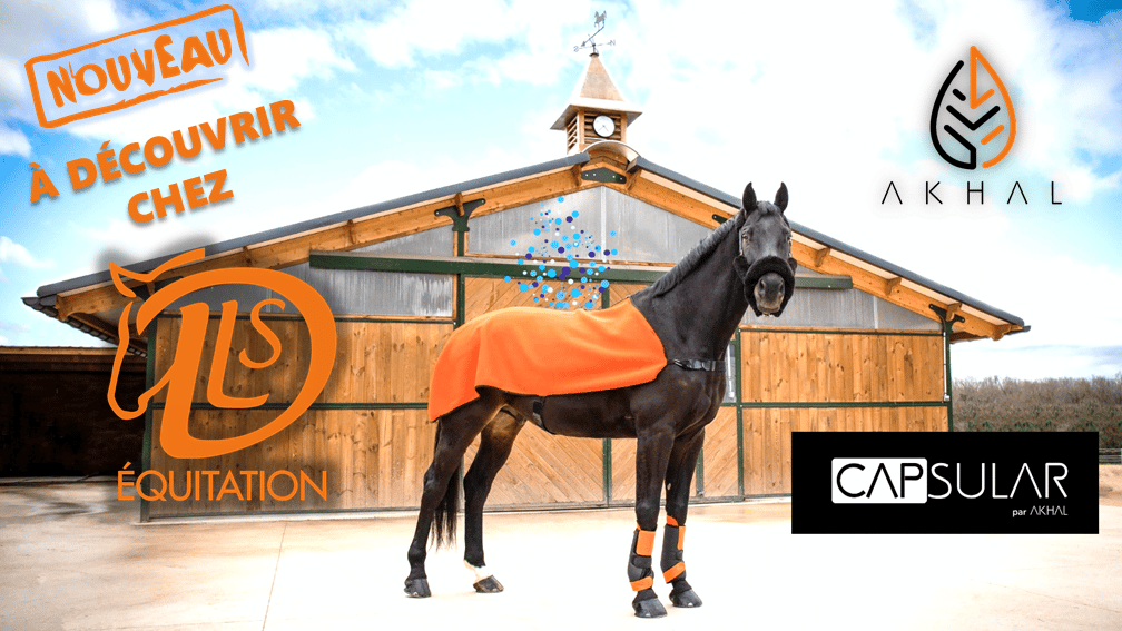 achat protections cheval principes actifs