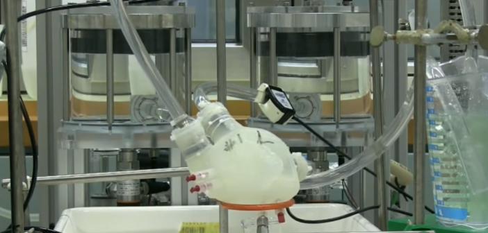 cœur artificielle en silicone imprimé en 3D en cours de test