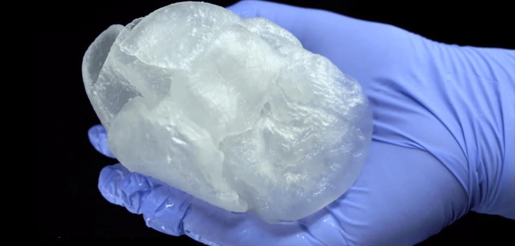 une reproduction de cœur humain imprimée en 3D pour l'entraînement des chirurgiens