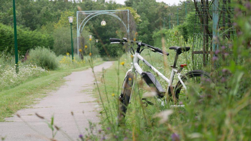 photo du vélo électrique radmission 1 vue de derrière