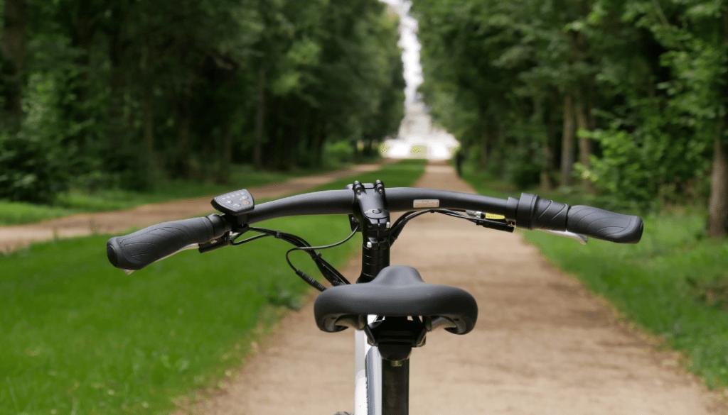 photo du guidon du vélo électrique radmission 1