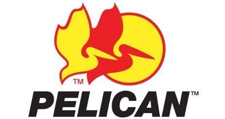 Pelican les meilleures mallettes et valises robustes et solides